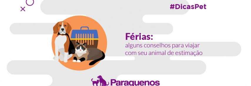 Férias: alguns conselhos para viajar com seu animal de estimação