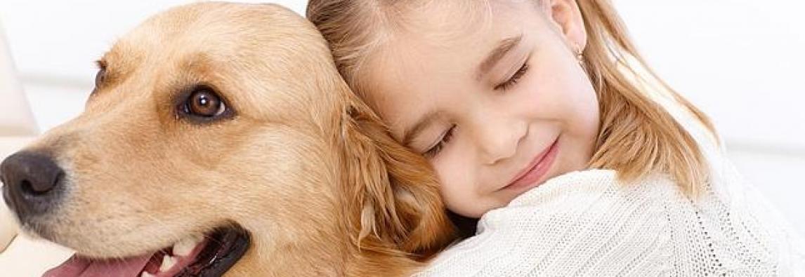 Estudo afirma que crianças preferem cachorro do que gato