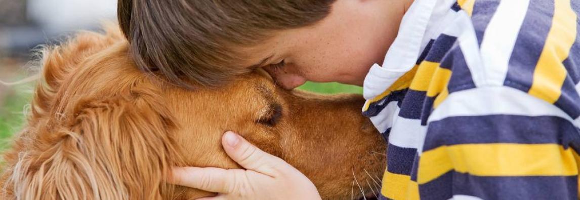 Crianças preferem animais de estimação a irmãos, diz estudo