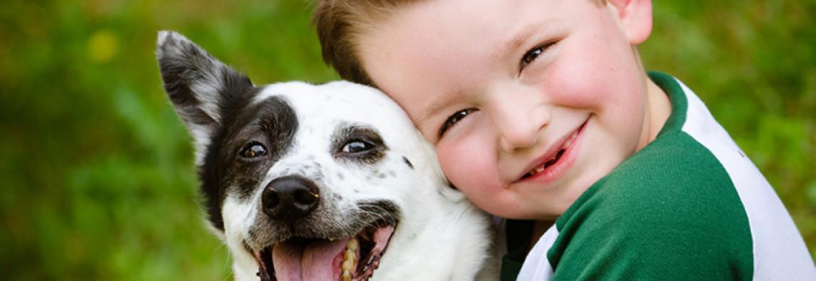 PETLOVERS: CUIDADOS COM OS ANIMAIS DE ESTIMAÇÃO NA VOLTA ÀS AULAS DAS CRIANÇAS