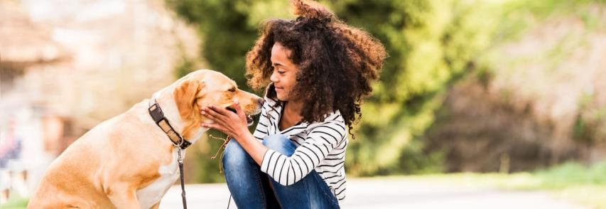 Pet Terapia: Cães auxiliam crianças e adultos com deficiências e outros problemas de saúde