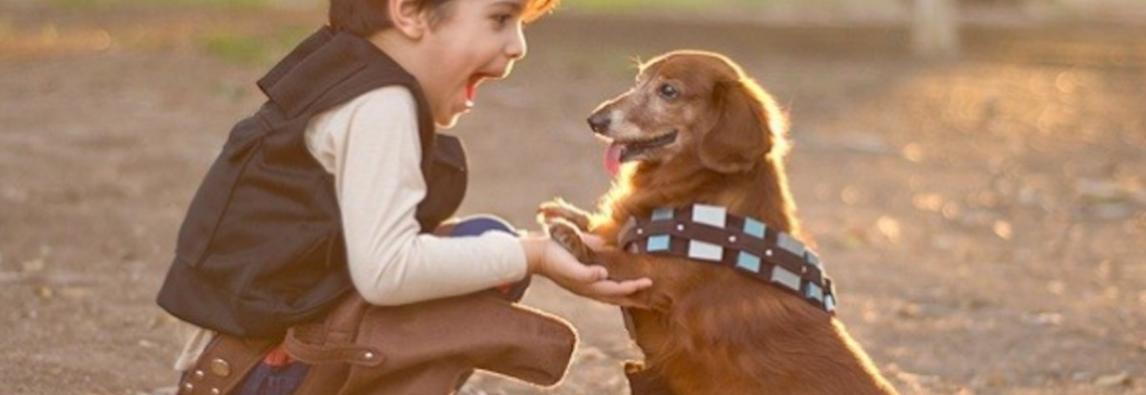 Crianças e animais de estimação: benefícios e cuidados.
