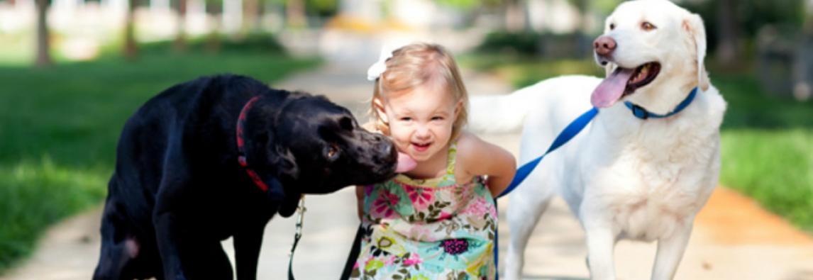 Qual é o cachorro ideal para as crianças?
