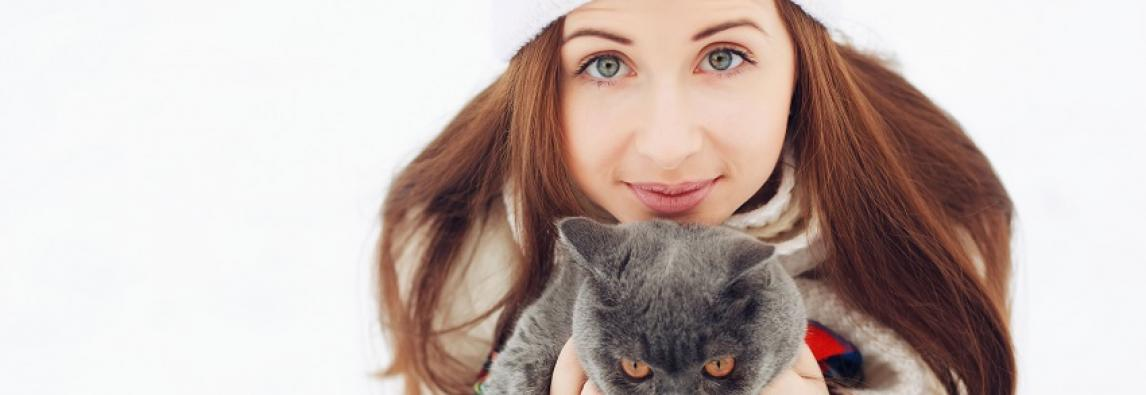 5 dicas para se comunicar melhor com seu gato